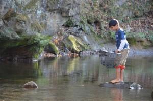 Boy Playing in Creek